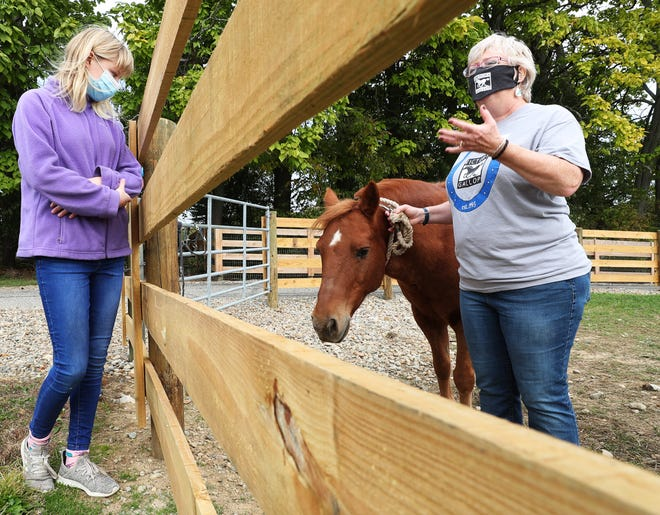 Jane Schueler, 14, of Akron looks at Mr. Pony as Nancy Byrd, a volunteer at Victory Gallop, an equestrian therapeutic riding center, talks about the program during an open house to mark the center's 25th anniversary on Saturday in Bath Township. Schueler has been a rider at the program since she was two years old. [Mike Cardew/Beacon Journal]